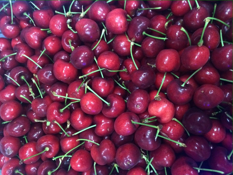 cherry uc do nhap khau